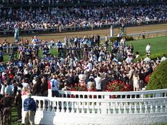 DSC00442 (kpersson) Tags: kentucky 2008 derby deby