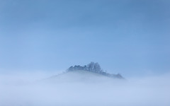 Top of the Morning - Explored 9/2/17 (Sarah_Brooks) Tags: misty mist fog inversion somerset landscapes morning winter feb 2017 hill trees