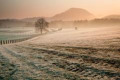 100_1338 (Bartek Rozanski) Tags: vysokalipa libereckykraj czechrepublic bohemianswitzerland ceskesvycarsko ceske mountains hill czechia usteckykraj field pasture rural europe sunrise frost spring