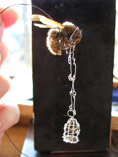wasp cage with necklace by holly bobisuthi