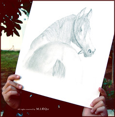 H o r s e   (M.LQtr) Tags: horse girl pencil garden paper drawing sony mona