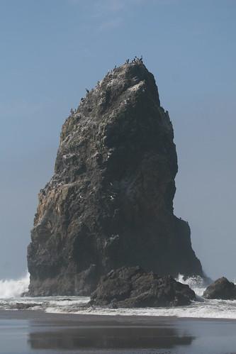 Haystack Rock Sibling