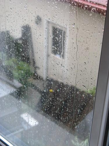 Rain_Damage 008