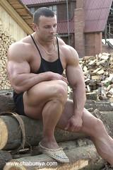 Gay bodybuilder bear