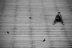 Still life with a human (Pensiero) Tags: blackandwhite bw man paris scale sitting pigeons steps ladefense uomo portfolio parigi piccioni seduto