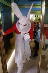 Hare in hairy mood (Jumpin'Jack) Tags: big angry dangerous white rabbit red coat huge pocket watch exit stepping outofan elevator lift aliceinwonderland gone even madder thanbefore mirrors throughthe looking glass