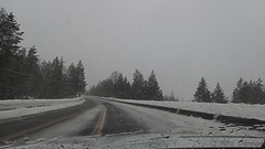 Driving back from Grand Teton National Park today, a snow storm blew in. (scepdoll) Tags: jackson wyoming grandtetonnationalpark nationalelkrefuge elk bison foxes snowshoeing