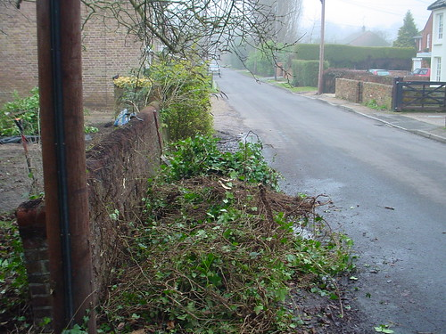 Landscaping Prestbury - Formal Garden  Image 8