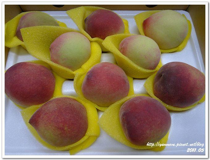 新社華豐農場甜蜜桃 (4)