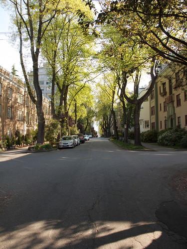 Bute Street