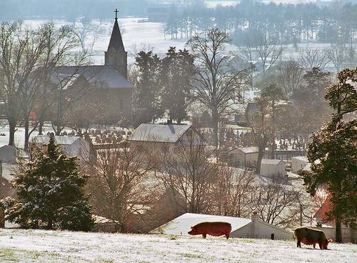 Saint Joseph Roman Catholic Church, in Zell, Missouri, USA - view from distance with pigs