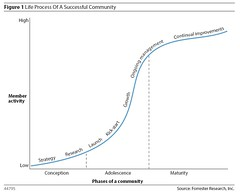 Life Process of a Successful Community