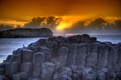 Cook Island (Christolakis) Tags: bird sunrise earlymorning nsw hdr giantscauseway orangefilter longdrive cookisland fingalhead 3exp perfectangle canon400d platinumphoto aplusphoto bestofaustralia theunforgettablepictures proudshopper goldstaraward absolutelystunningscapes