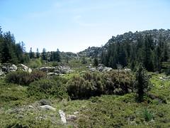 Visite de la partie SE de la plaine d'Uovacce