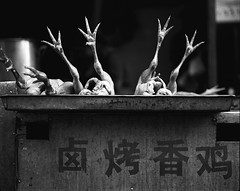 Chicken feet (mexadrian) Tags: china blackandwhite food chicken noiretblanc market birdflu concept 6x7 kunming avian chickenfeet plaubel makina photology