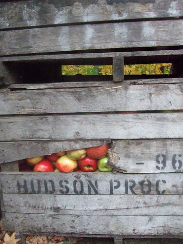 Apple Crate by mehughes.