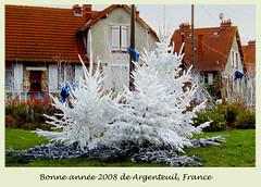 Carte de veux sapins (Julie70 Joyoflife) Tags: winter france seasons hiver noel christmass sonycybershot 2007 firs argenteuil sapins