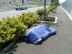14隅田川へ出る_02
