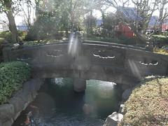 浅草影向堂 橋