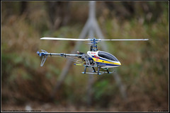 DSC_1316 (Chestert) Tags: radio control helicopter