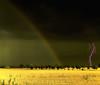 Thunder and rainbow! (B℮n) Tags: lighting topf50 bravo czech vivid topf300 topf150 topf100 500faves thunder topf200 breathtaking cubism topf400 naturesfinest topf500 blueribbonwinner supershot 100faves 50faves 200faves 150faves 35faves golddragon abigfave 300faves anawesomeshot impressedbeauty aplusphoto flickrbest 400faves superbmasterpiece diamondclassphotographer megashot theunforgettablepictures 75faves thegardenofzen thegoldendream theroadtoheaven goldstaraward mastersoflifegallery malekysice alemdagqualityonlyclub
