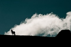 horse with cloud (chinua000) Tags: blue horse cloud nature digital canon album silouette ridge canon10d 70200l jalalspages flickrlovers