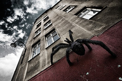 arachnofobia (blnd) Tags: windows sky wall spider fear perspective dramatic wideangle praga horror warszawa fobia arachnofobia krakoff blnd wopaachabsurdu