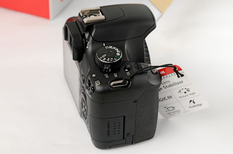 Canon XSi / 450D -- right view