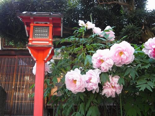 御霊神社(奈良町)