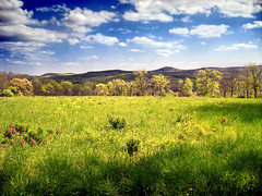 Spring (Nicholas_T) Tags: sky clouds rural landscape newjersey spring meadow brightlight creativecommons appalachianmountains warrencounty jennyjumpmountain 123nj cumuliform whitetownship beaverbrookwildlifemanagementarea