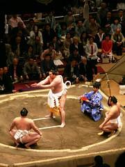 Yokozuna Dance