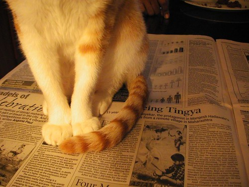 Try reading the newspaper now!