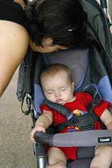 Sleeping Baby 15751
