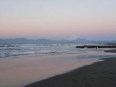 江の島西海岸 (8)
