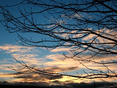 Streaks at sunrise (Starlisa) Tags: sky silhouette clouds sunrise washington i5 branches truckstop tacoma 2007 dec20 starlisa img9887