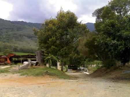 Semenyih Rubber Estate Scenery 1-2