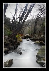 Rio de la Miel 11_DSC2281 w (Alberto Alrian) Tags: rio agua arroyo algeciras piedras cascada blueribbonwinner alrian photofaceoffwinner