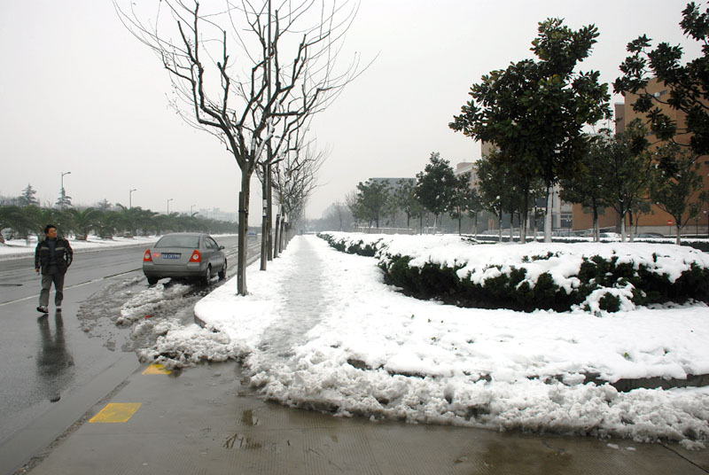 路上全是雪
