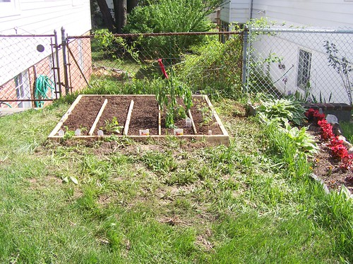 Our first square foot garden bed
