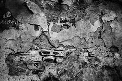 Briques & Cie. (pas le matin) Tags: blackandwhite bw texture wall noiretblanc nb romania mur roumanie sibiu