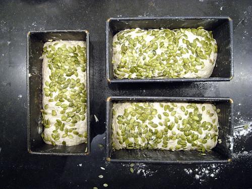 grovt bröd frön recept