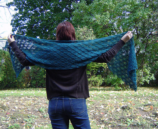 Woodland Shawl by brainylady