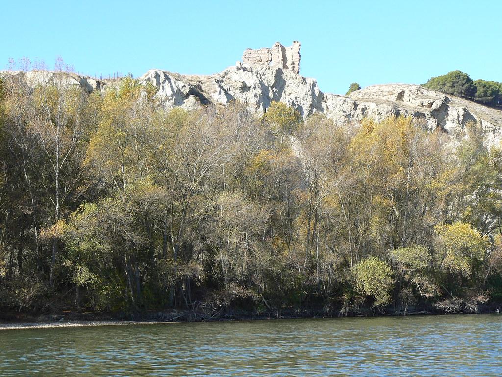 Río Aragón con el Arga en Otoño 003