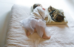 the very visual definition of a catnap (sesame ellis) Tags: girl toddler mykid tiny napping resting topanga year3 notmycat racheldevine wwwracheldevinecom