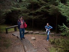 Kroz sumu (Mitrovic) Tags: glendalough cowicklow october2007