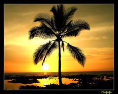 West Hawaii Sunset-Dec 2007 (R. J. Malfalfa) Tags: bigislandhawaii beautifulsunset konahawaii hawaiisunset konasunset malfalfa romanticsunset infinestyle theunforgettablepicture