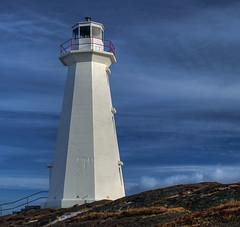 Newfoundland - Cape Spear (gwhiteway) Tags: christmas xmas lighthouse snow canada nature water rock stone newfoundland walking landscape hiking shoreline stjohns hdr cans2s preservetnc07 bestnaturetnc07