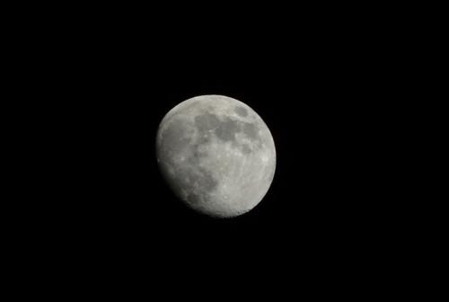 Moon - IMGP7255