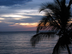 Dream time... (♡ Popotito ♡) Tags: ocean sunset sea sky costa color dawn coast mar colombia colores palm cielo caribbean puestadesol pops untouched palmera santamarta soe oceano caribe caribean sinretoques platinumphoto impressedbeauty popotito platinumphotography