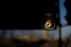 06 February, 17.08 (Ti.mo) Tags: uk light england house london lightbulb bulb architecture tate tatemodern southbank villa tropical aluminium bankside tropicalmodernism jeanprouv lamaisontropicale jeanprouv